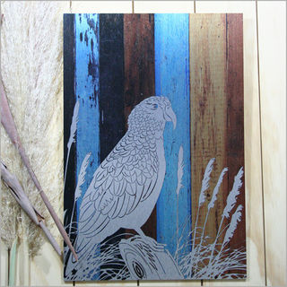 ACM Printed Rectangle: Aged Timber Kea (Large)